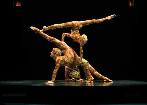 acts_contorsion